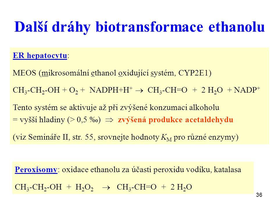 Další dráhy biotransformace ethanolu