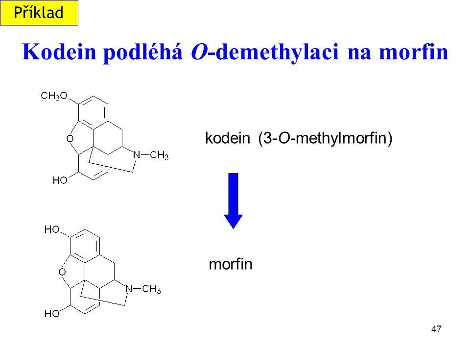 Kodein podléhá O-demethylaci na morfin
