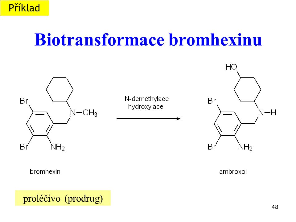 Biotransformace bromhexinu