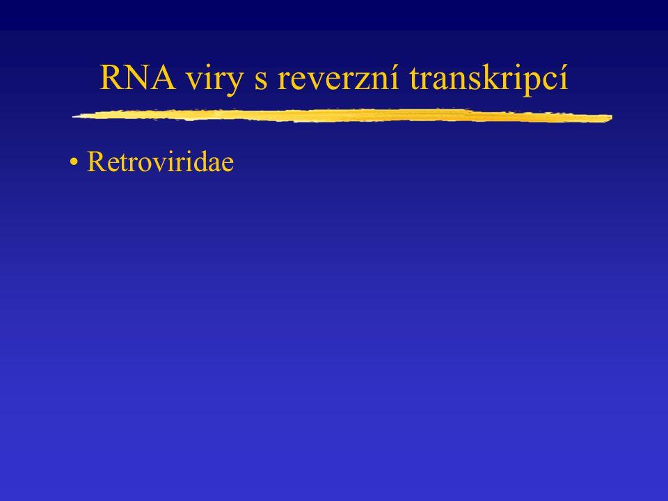 RNA viry s reverzní transkripcí