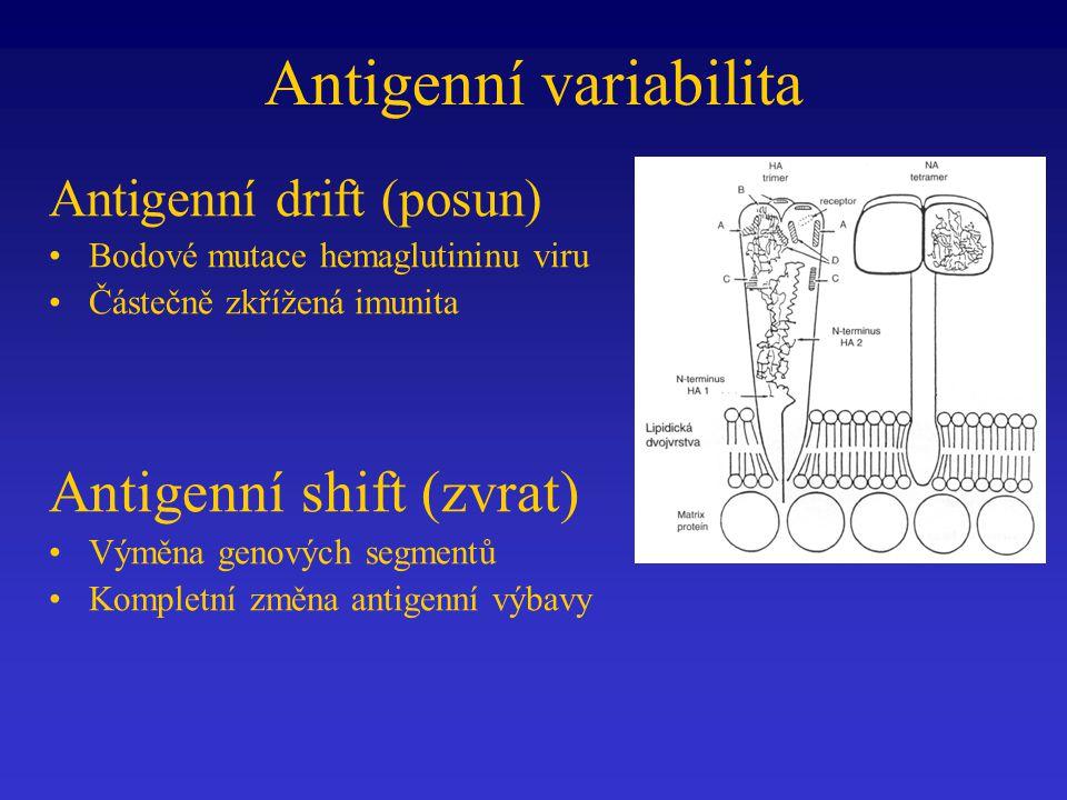 Antigenní variabilita