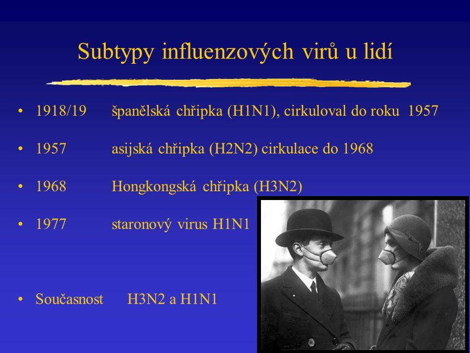 Subtypy influenzových virů u lidí