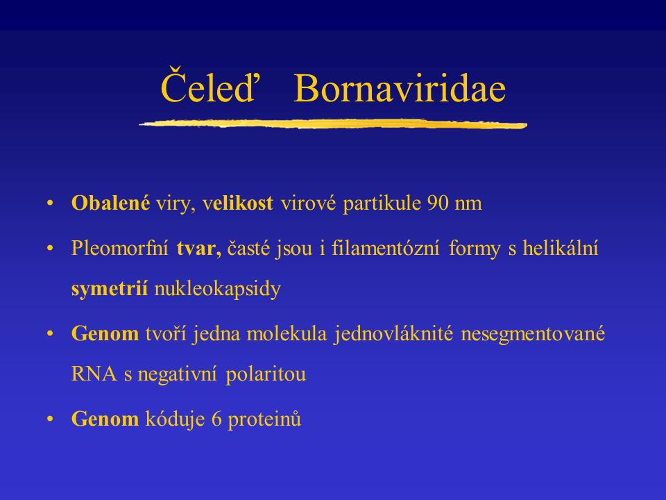 Čeleď Bornaviridae Obalené viry, velikost virové partikule 90 nm