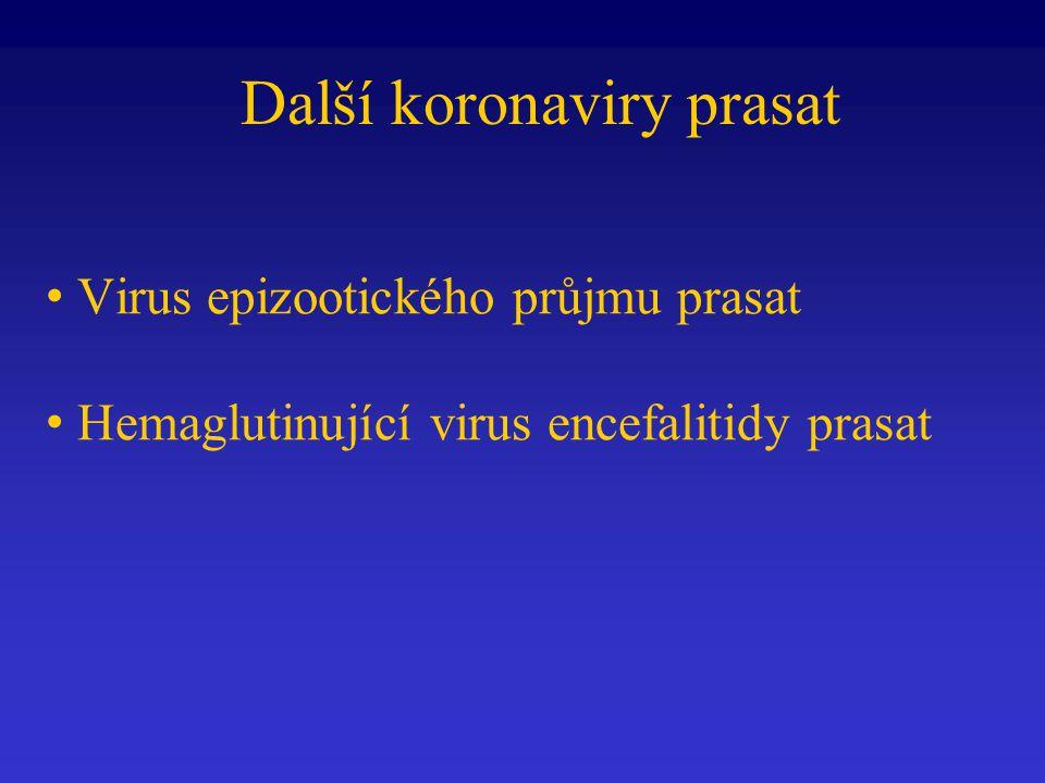 Další koronaviry prasat
