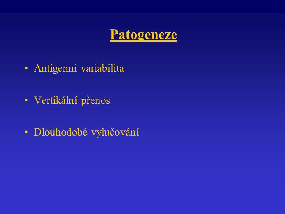 Patogeneze Antigenní variabilita Vertikální přenos