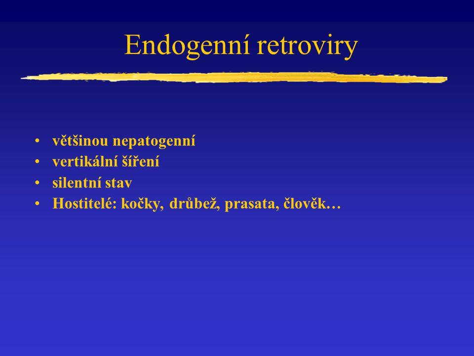 Endogenní retroviry většinou nepatogenní vertikální šíření