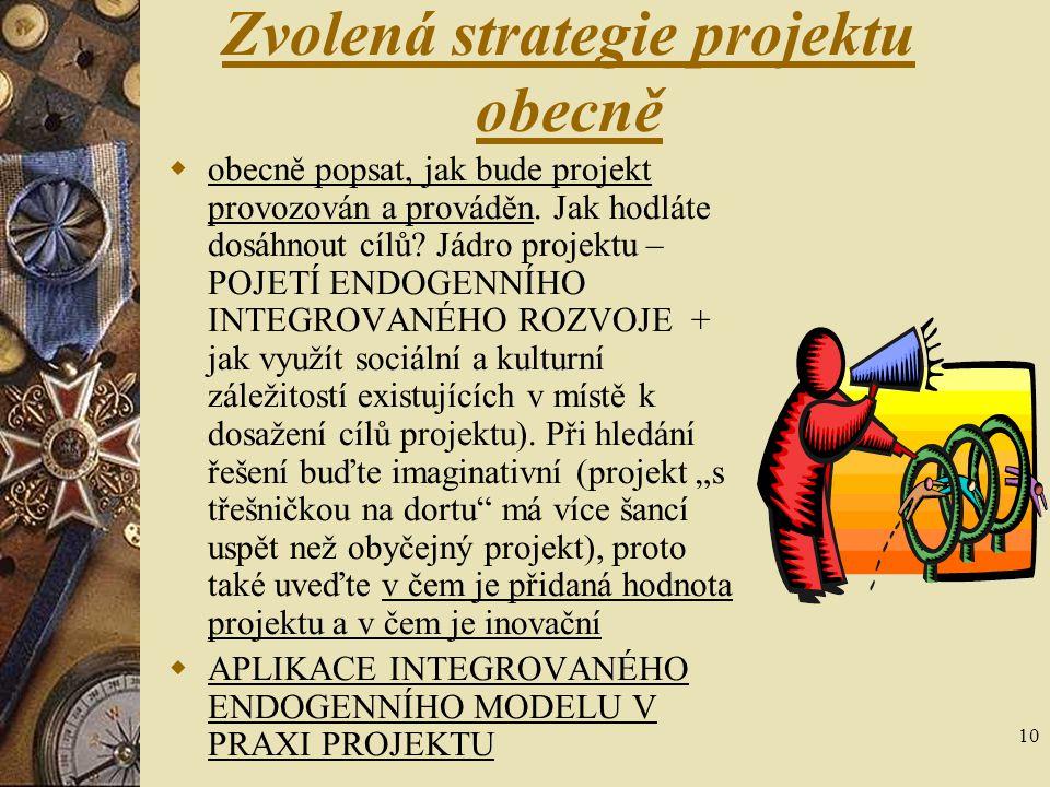 Zvolená strategie projektu obecně