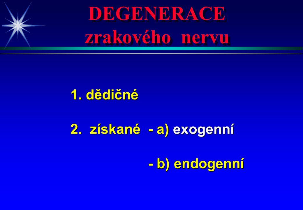 DEGENERACE zrakového nervu