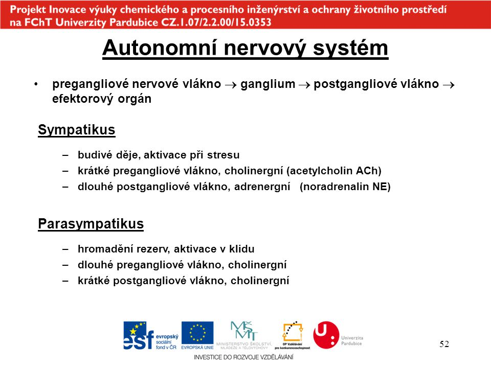 Autonomní nervový systém