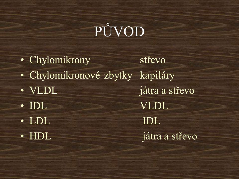 PŮVOD Chylomikrony střevo Chylomikronové zbytky kapiláry