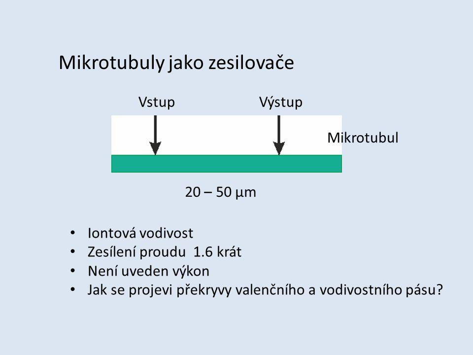 Mikrotubuly jako zesilovače