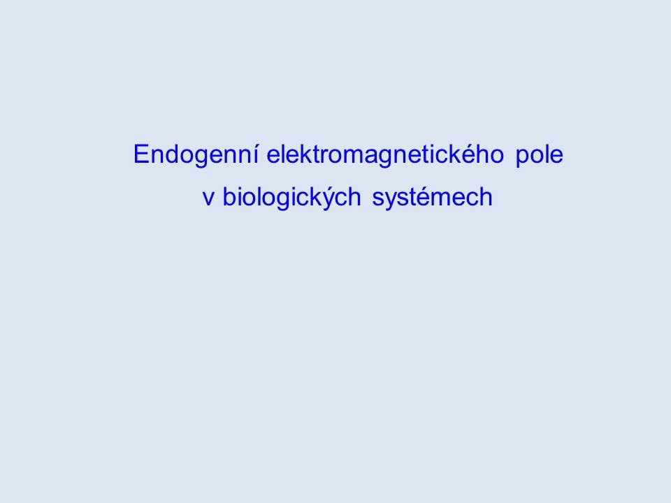 Endogenní elektromagnetického pole v biologických systémech