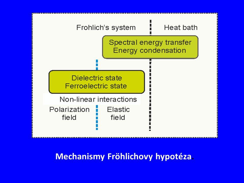 Mechanismy Fröhlichovy hypotéza.