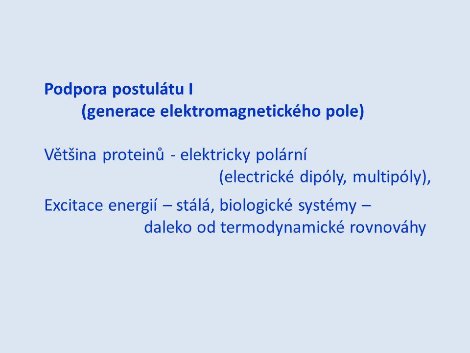 Podpora postulátu I (generace elektromagnetického pole) Většina proteinů - elektricky polární. (electrické dipóly, multipóly),