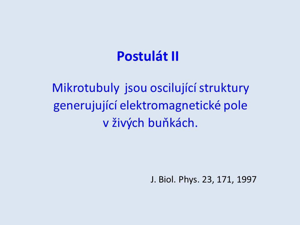Postulát II Mikrotubuly jsou oscilující struktury generujující elektromagnetické pole v živých buňkách.