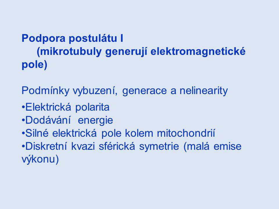 Podpora postulátu I (mikrotubuly generují elektromagnetické pole) Podmínky vybuzení, generace a nelinearity.