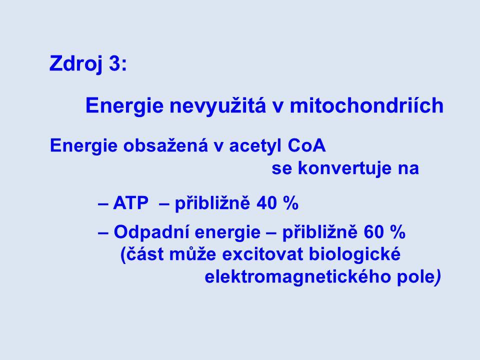 Energie nevyužitá v mitochondriích