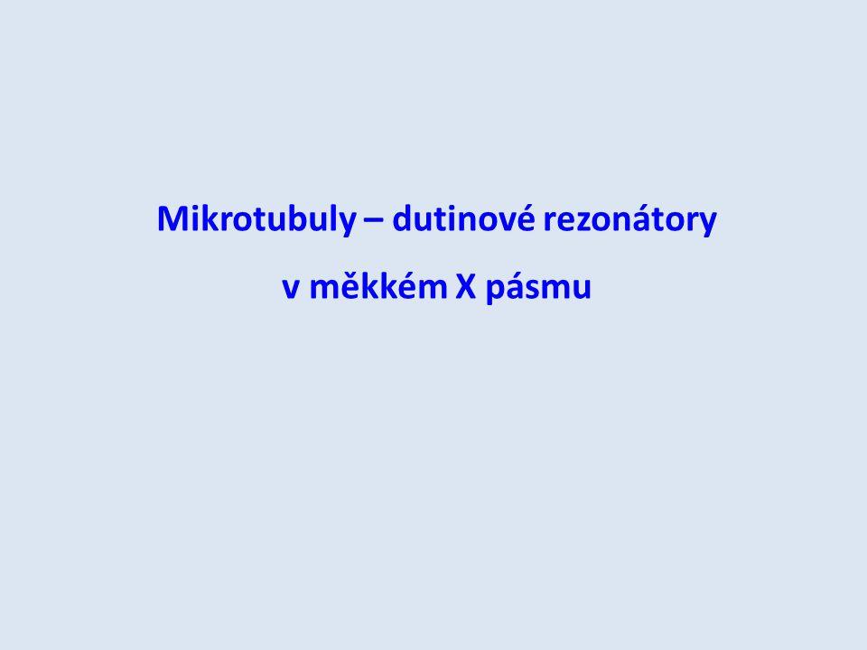 Mikrotubuly – dutinové rezonátory