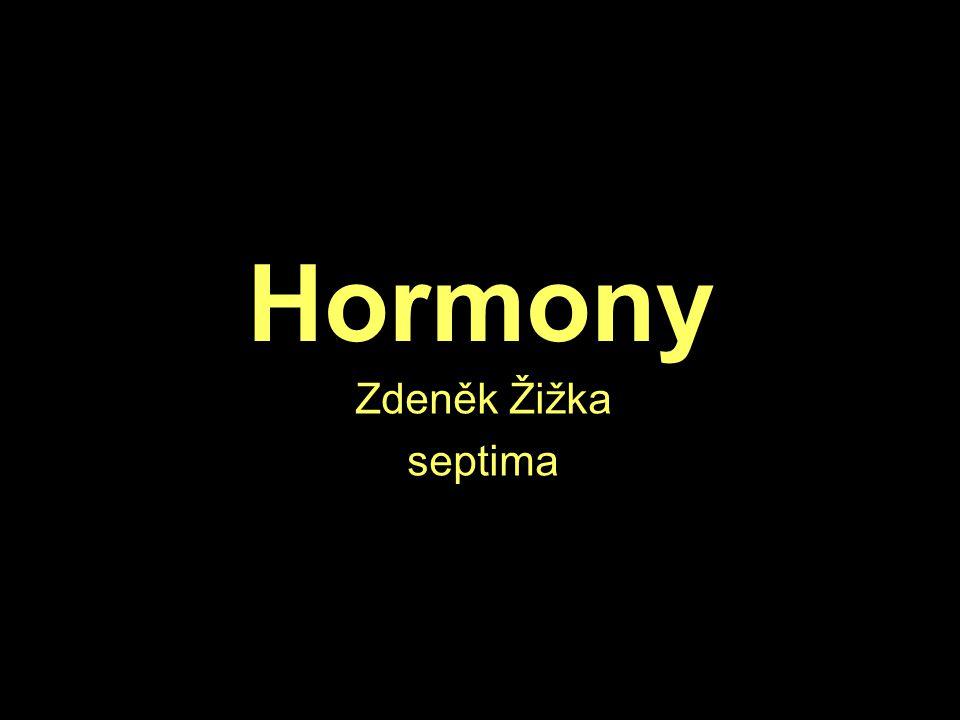 Hormony Zdeněk Žižka septima