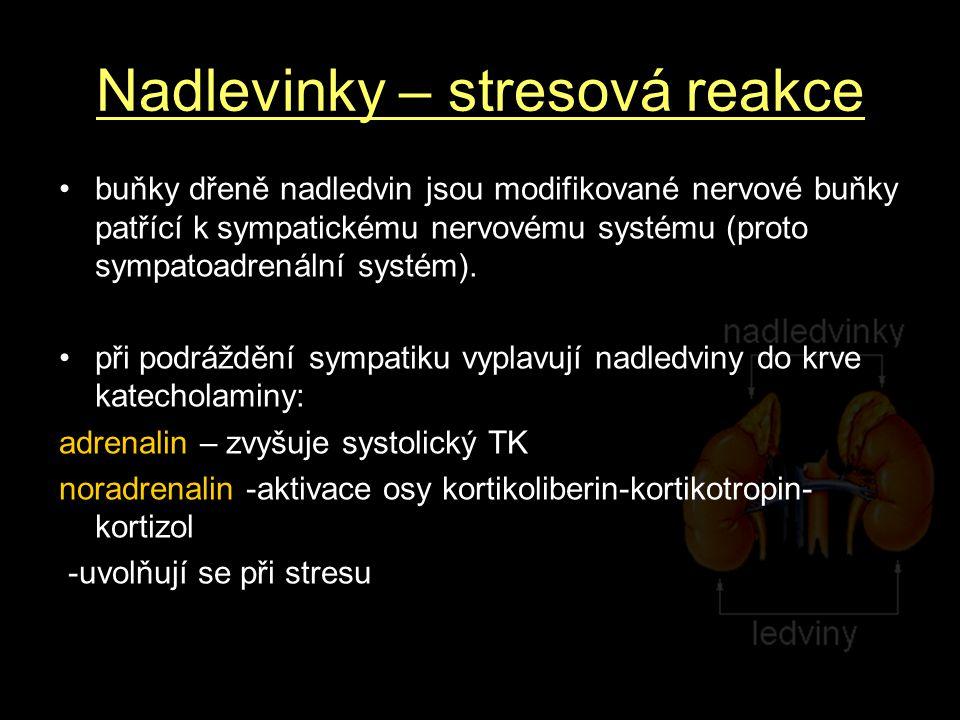 Nadlevinky – stresová reakce