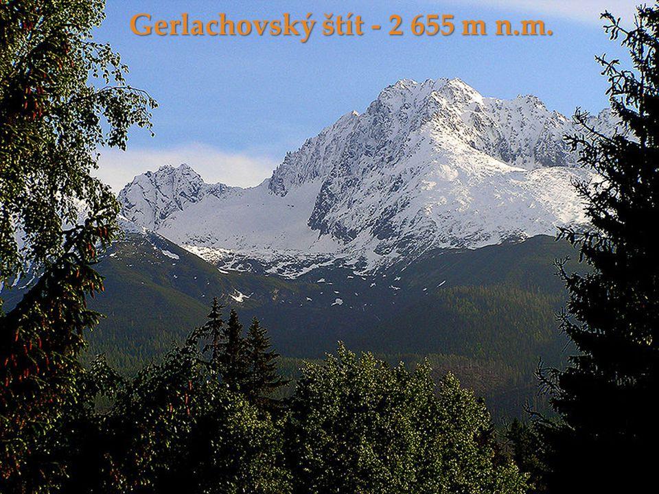 Gerlachovský štít - 2 655 m n.m.