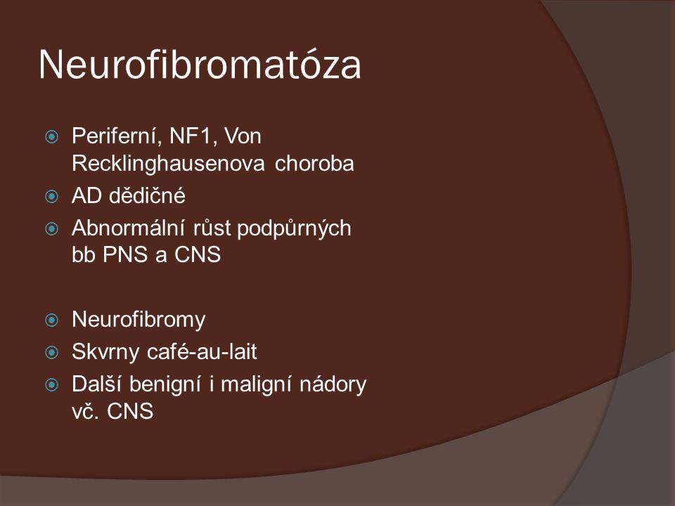 Neurofibromatóza Periferní, NF1, Von Recklinghausenova choroba