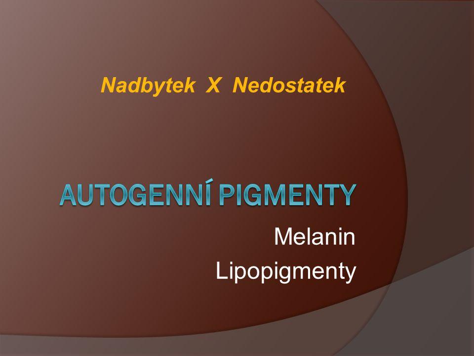 Nadbytek X Nedostatek Autogenní pigmenty Melanin Lipopigmenty