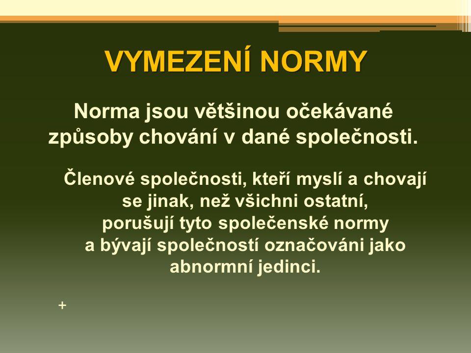 VYMEZENÍ NORMY Norma jsou většinou očekávané