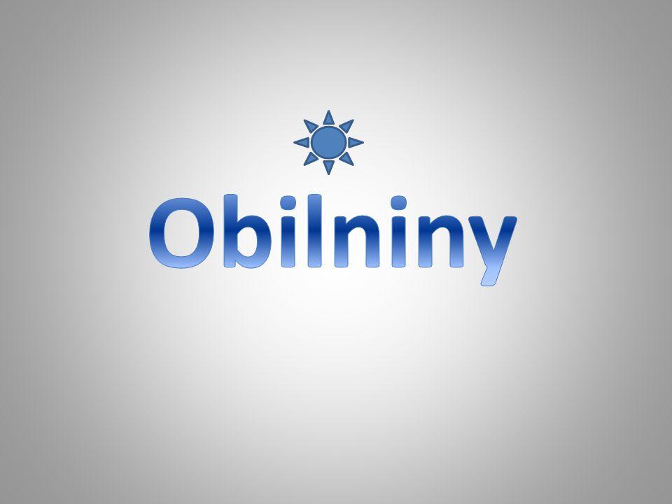 Obilniny