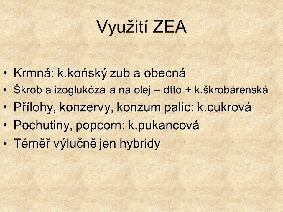 Využití ZEA Krmná: k.końský zub a obecná