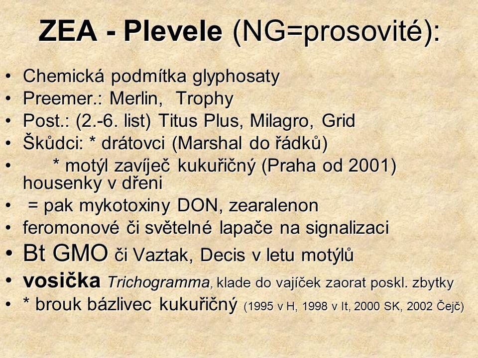 ZEA - Plevele (NG=prosovité):