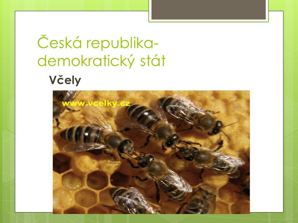 Česká republika- demokratický stát