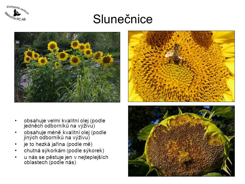 Slunečnice obsahuje velmi kvalitní olej (podle jedněch odborníků na výživu) obsahuje méně kvalitní olej (podle jiných odborníků na výživu)