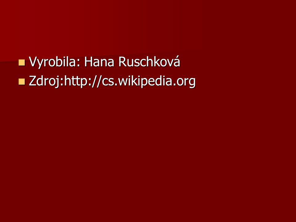 Vyrobila: Hana Ruschková