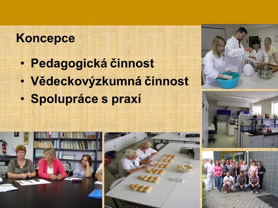 Koncepce Pedagogická činnost Vědeckovýzkumná činnost Spolupráce s praxí