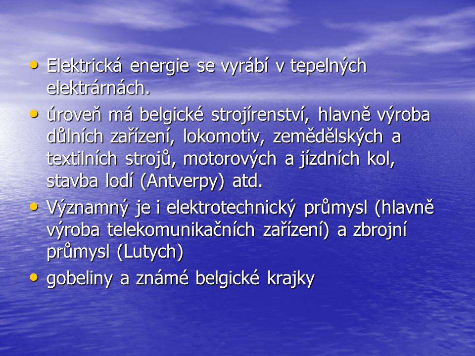 Elektrická energie se vyrábí v tepelných elektrárnách.