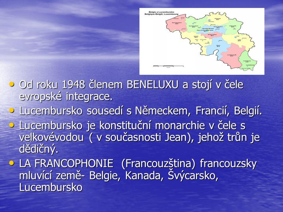 Od roku 1948 členem BENELUXU a stojí v čele evropské integrace.