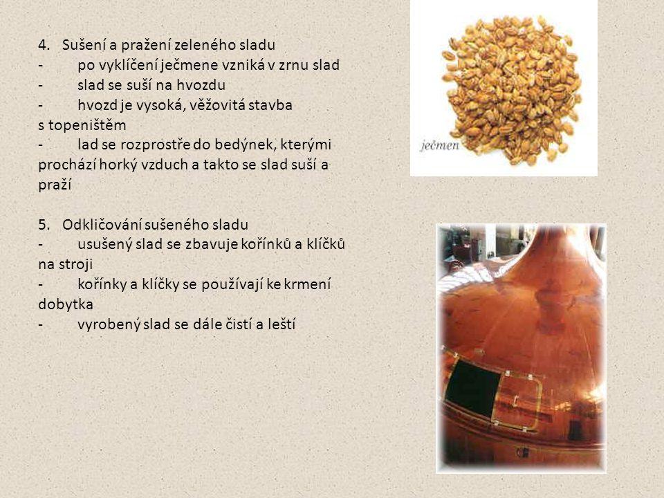 4. Sušení a pražení zeleného sladu