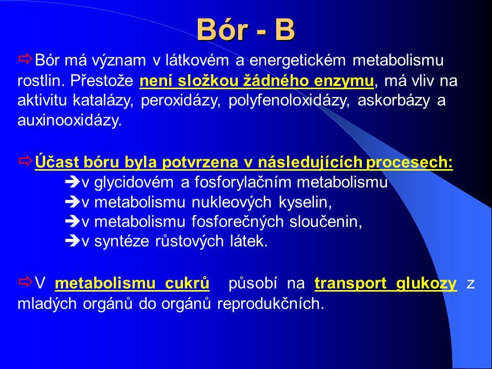 Bór - B