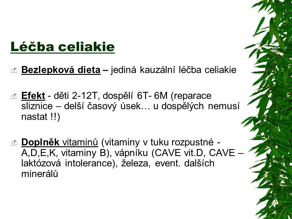 Léčba celiakie Bezlepková dieta – jediná kauzální léčba celiakie