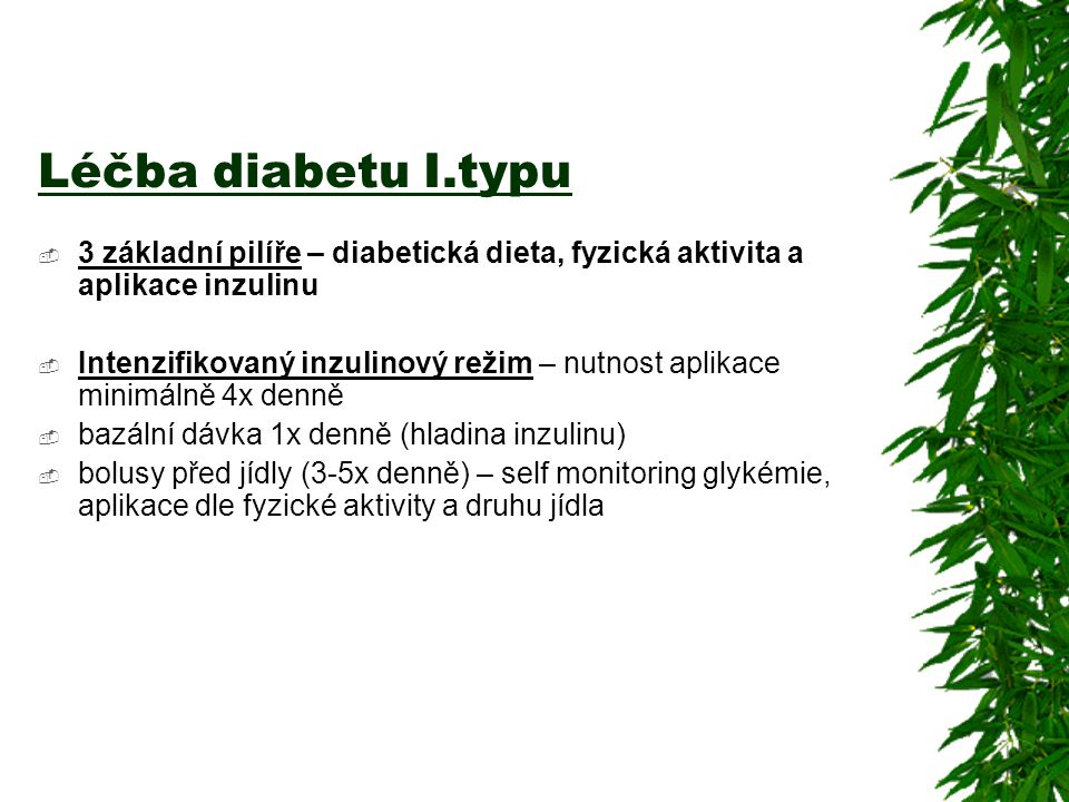 Léčba diabetu I.typu 3 základní pilíře – diabetická dieta, fyzická aktivita a aplikace inzulinu.