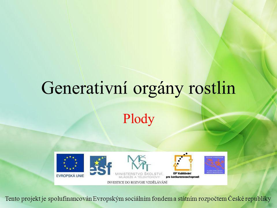 Generativní orgány rostlin