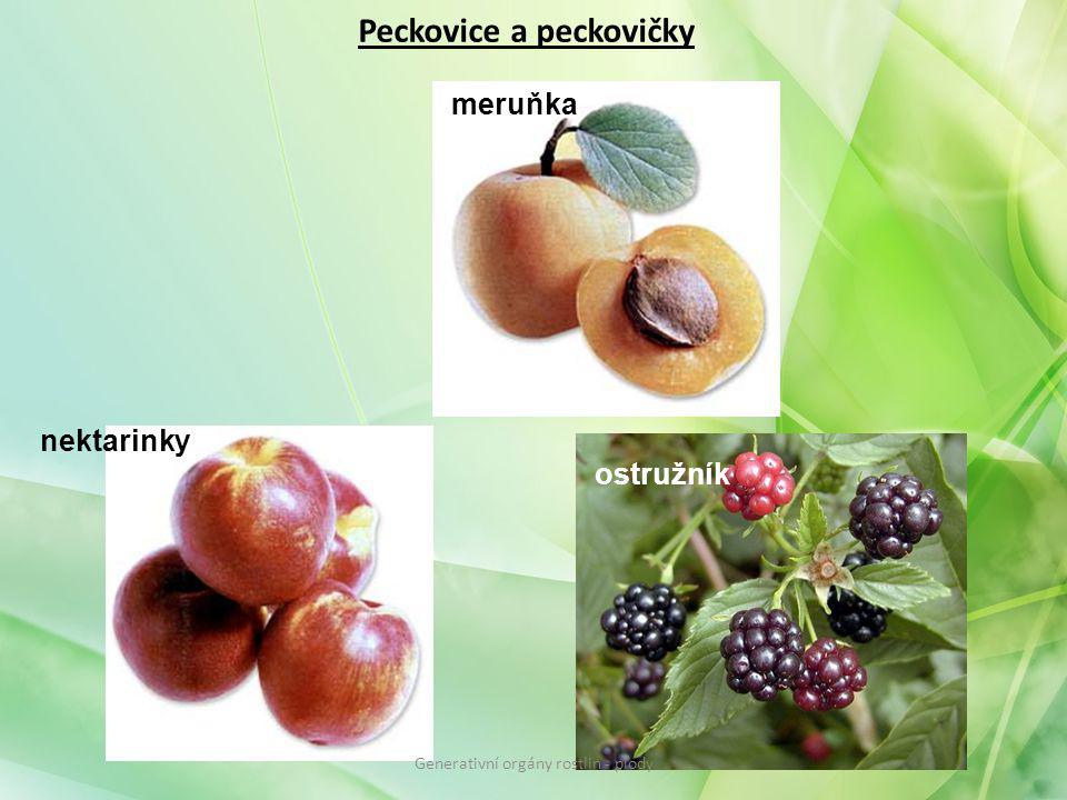 Peckovice a peckovičky