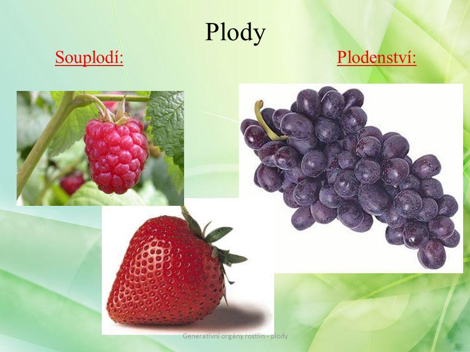 Plody Souplodí: Plodenství: Generativní orgány rostlin - plody