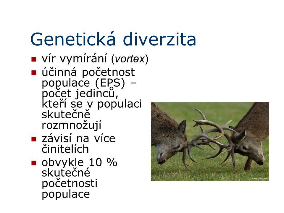 Genetická diverzita vír vymírání (vortex)