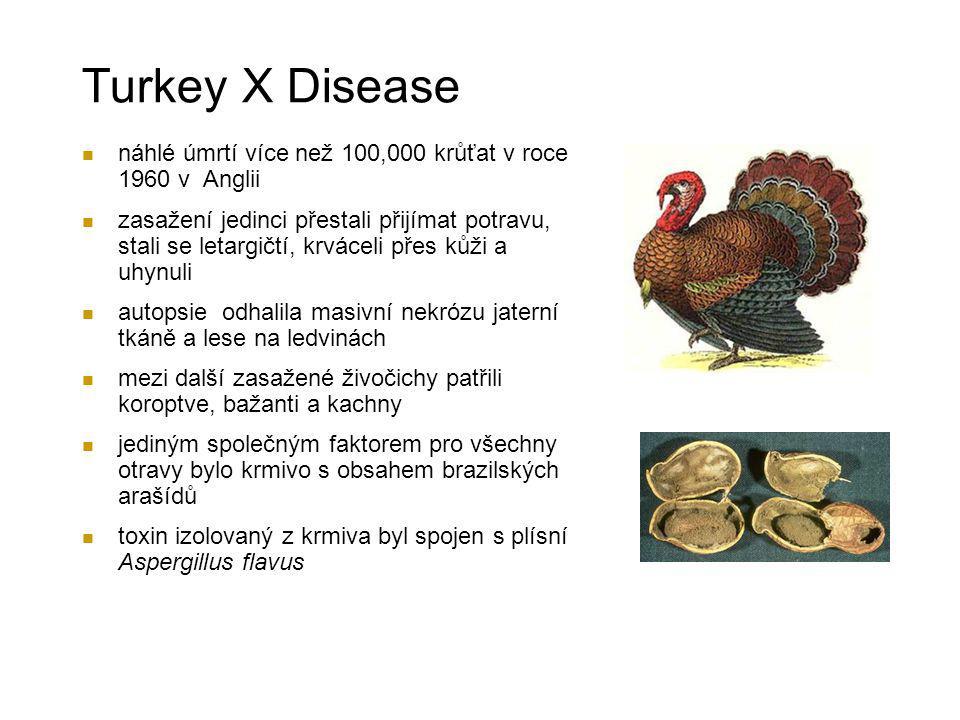 Turkey X Disease náhlé úmrtí více než 100,000 krůťat v roce 1960 v Anglii.