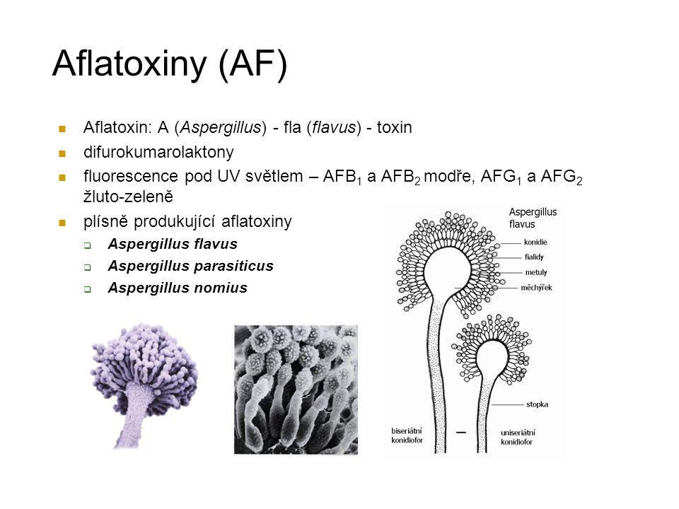 Aflatoxiny (AF) Aflatoxin: A (Aspergillus) - fla (flavus) - toxin