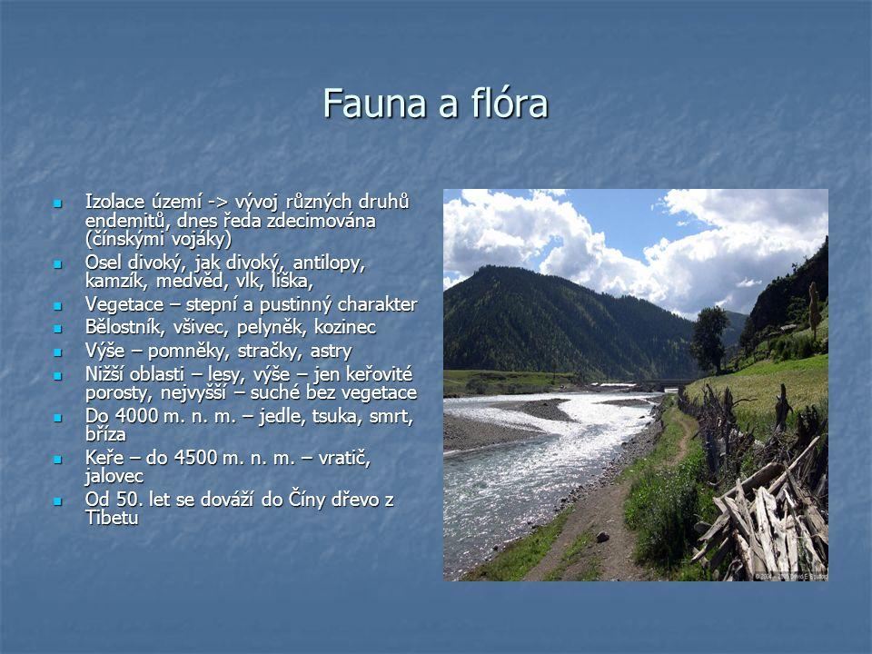 Fauna a flóra Izolace území -> vývoj různých druhů endemitů, dnes ředa zdecimována (čínskými vojáky)