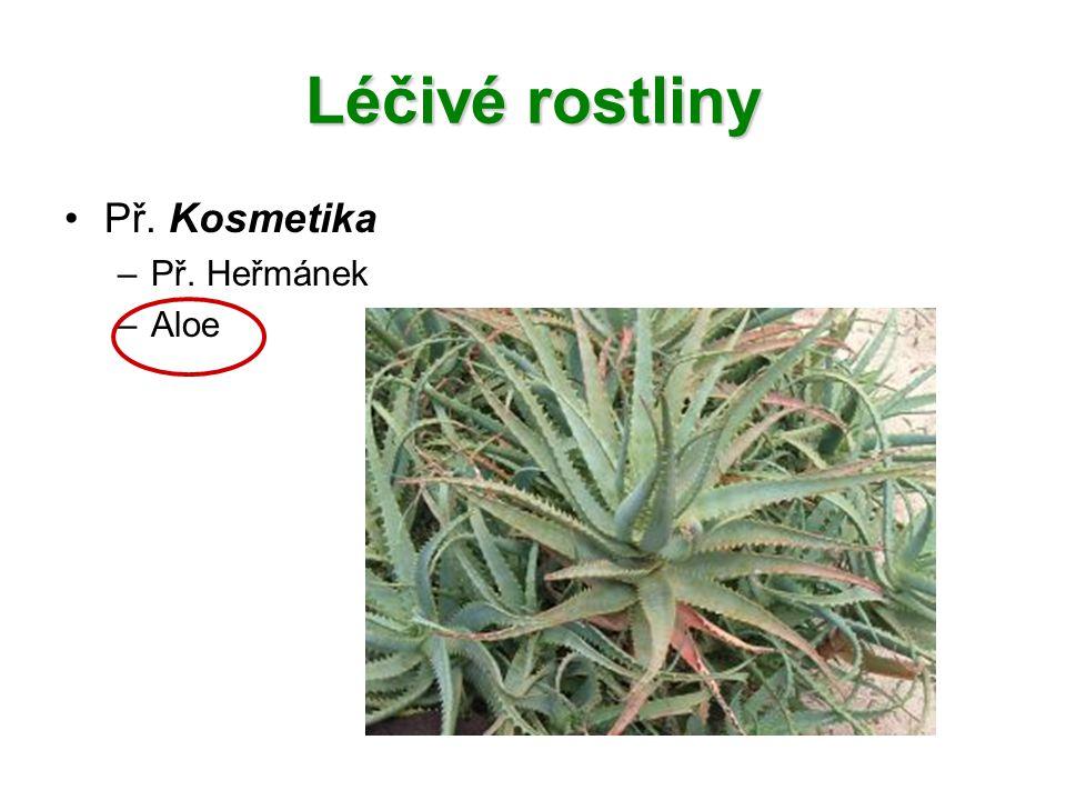 Léčivé rostliny Př. Kosmetika Př. Heřmánek Aloe