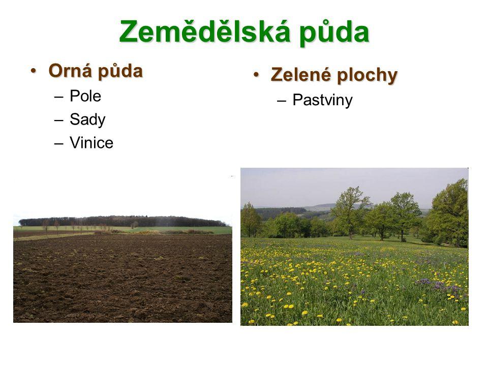 Zemědělská půda Orná půda Pole Sady Vinice Zelené plochy Pastviny